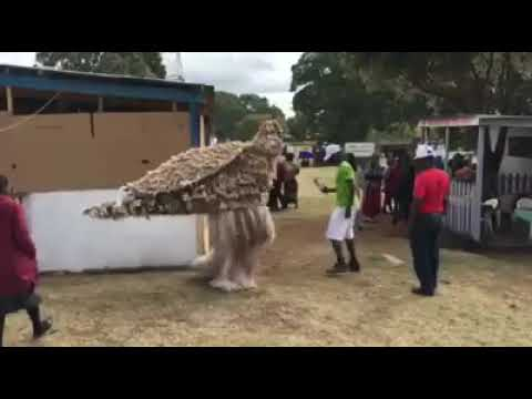 Malawi tradition (nyawu dance)