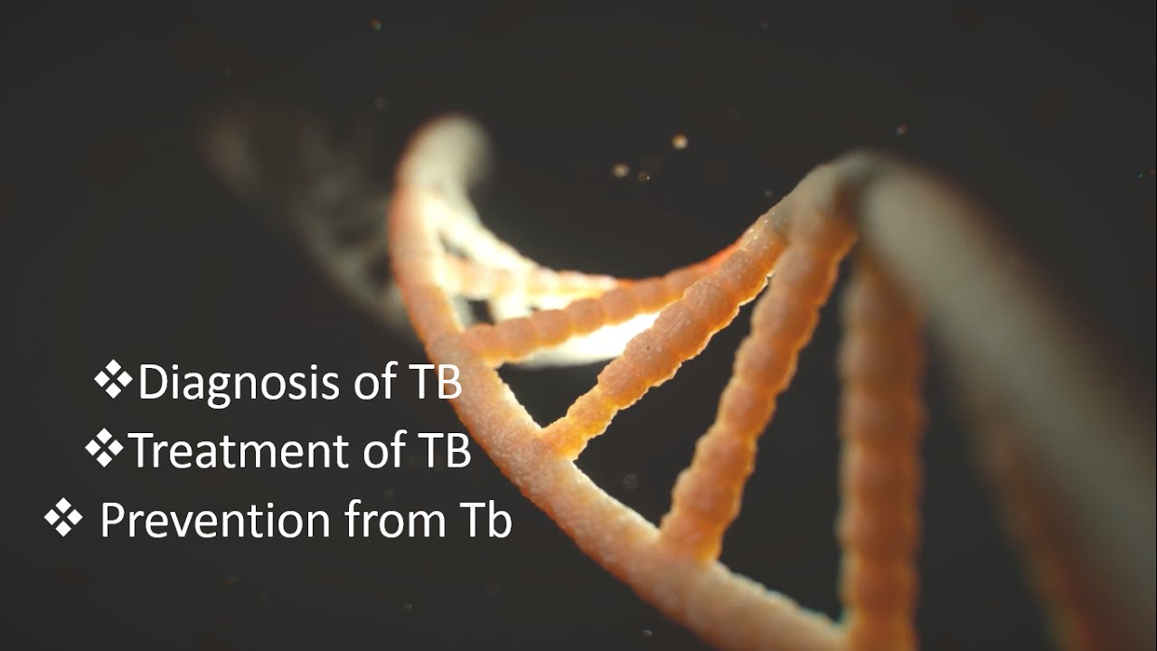 Best Free Powerpoint Template For Biology Presentations
