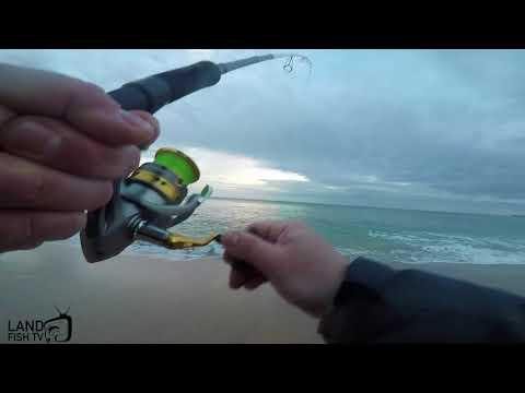 Beach Hopping For Australian Salmon