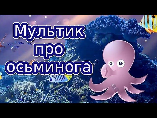 Смотреть видео Мультик про осьминога | Мультики для детей