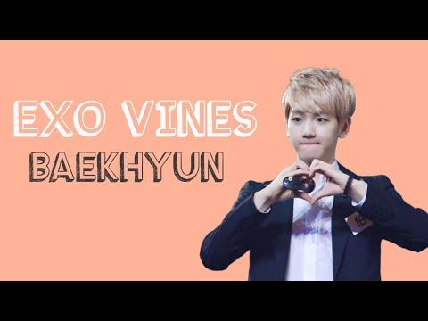 EXO VINES: Baekhyun