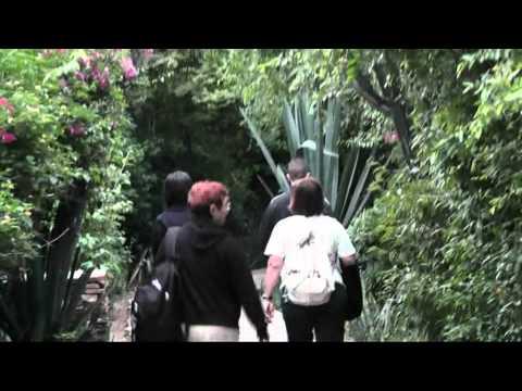 Kenya Safari -  Fig Tree Camp Lodge nella riserva Masai
