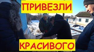 Поездка к БАБУШКАМ / Привезли продукты / Загрузили зерно / Семья в деревне