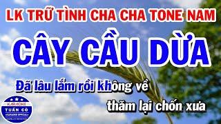 Karaoke Liên Khúc Nhạc Sống Cha Cha Tone Nam || Cây Cầu Dừa || Tình Nhỏ Mau Quên