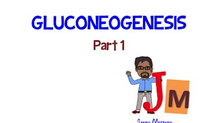 Gluconeogenesis Part 1