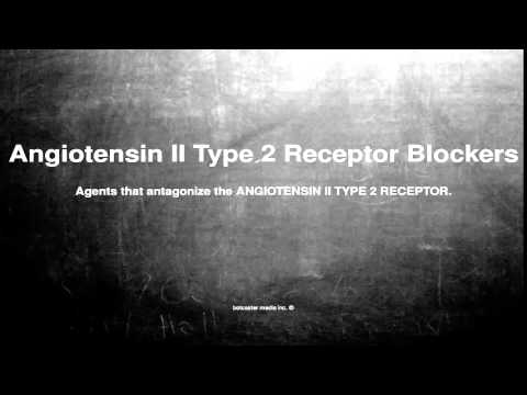 Medical vocabulary: What does Angiotensin II Type 2 Receptor Blockers mean