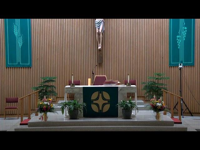 July 17, 2021 - 4:30pm Vigil Mass