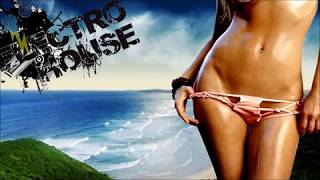 THE BEST OF ELECTRO & HOUSE 2014 [Mixed by DjVibe]