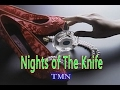 Nights of The Knife (カラオケ) TMN