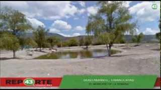 Bustamante - Tamaulipas