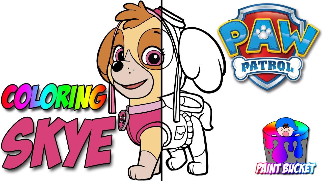 coloring paw patrol u0027s skye nickelodeon u0027s paw patrol coloring