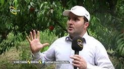 Nektari Yetiştiriciliği - % 100 Tarım / Çiftçi TV