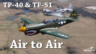 TP-40 Air to Air & TF-51 Mustang