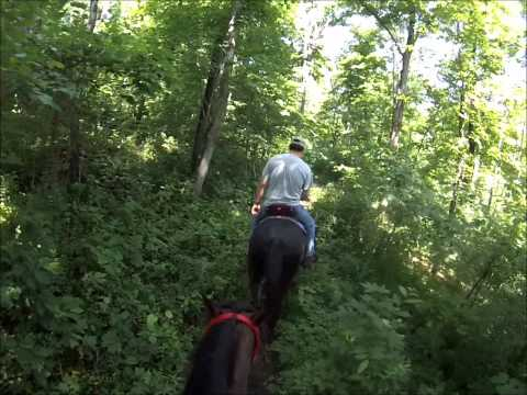 A stroll through Shaker Village with Bunny and Pete - May 2015 - GoPro