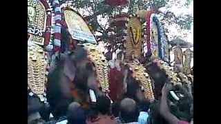 Ayiramkanni Pooram 2012 : Thechikkotukavu Ramachandran Vs Mangalamkunnu Karnan