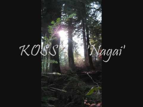 Koss 'Nagai' (Mule Electronic)