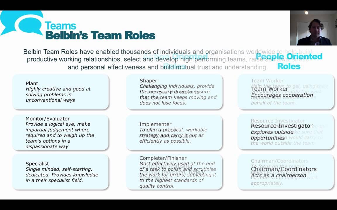 Team roles test