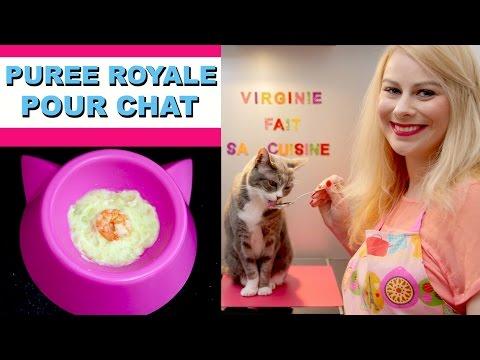 Recette Pour Chat [Purée Royale] ♡ Virginie Fait Sa Cuisine [74]