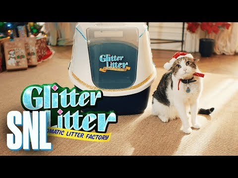 Cut for Time: Glitter Litter Automatic Litter - SNL