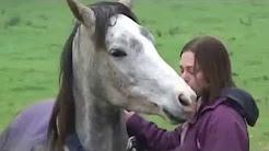 S-a întors acasă după 3 săptămâni de absenţă. Priviţi reacţia calului când o vede… Incredibil