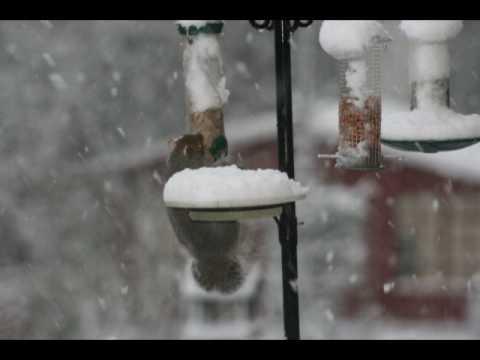 Winter in Rossendale