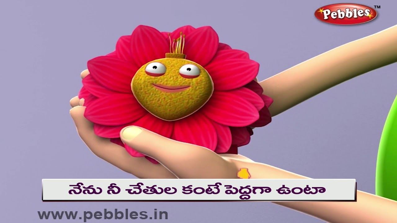 Dahlia Rhyme In Telugu Flowers Rhymes Telugu Rhymes For Kids Youtube