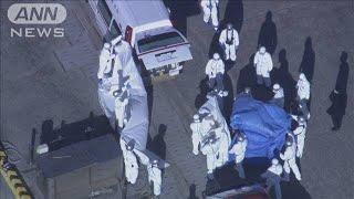 日本人3人を含む10人が感染 横浜沖のクルーズ船(20/02/05)
