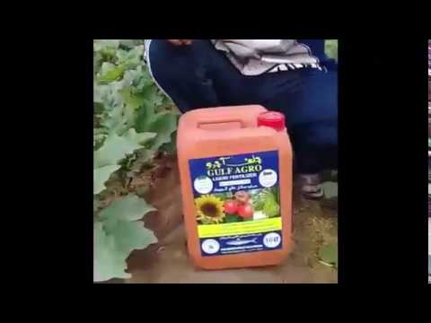 Gulf Company - Organic and Biological Fertilizers