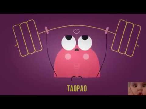 Comedia - Sólo para risas - broche de vídeo increíble 2016- broma de vídeos graciosos septiembre de