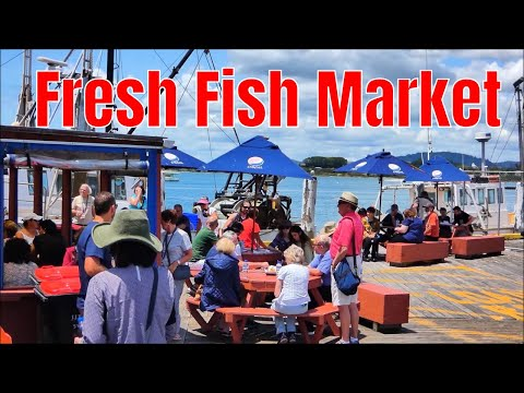 Fresh Fish Market, Iconic Shop With Best Fish And Chips In Tauranga