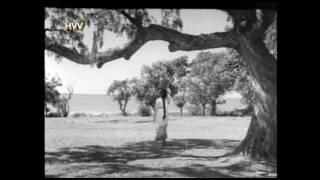 Kannevayasu movie song, E Divilo virisina Paarijaatamo E Kavilo merisina prema Geetamo.....