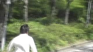 正式名称が定められていることもあり、関大内で最も認知度の高い坂道で...