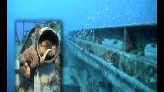 USS Oriskany - Florida Panhandle Shipwreck Trail