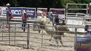 All American Rodeo, Rocker G Bull Riding, Saturday Afternoon, 2016