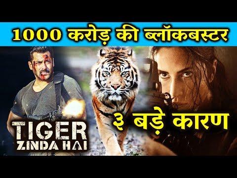 Salman Khan की Tiger Zinda Hai करेगी 1000 करोड़ की कमाई - जानिए बड़ी वजह