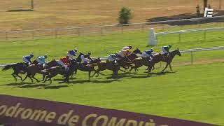 Vidéo de la course PMU PRIX DE VIGNEMONT