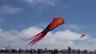 Kite Festival WSIKF 2014 Ascension 4 Thumbnail