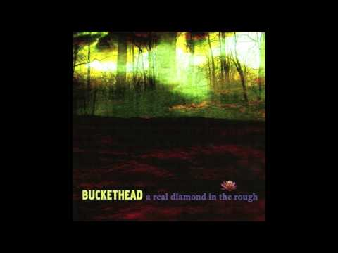 (Full Album) Buckethead - A Real Diamond in the Rough