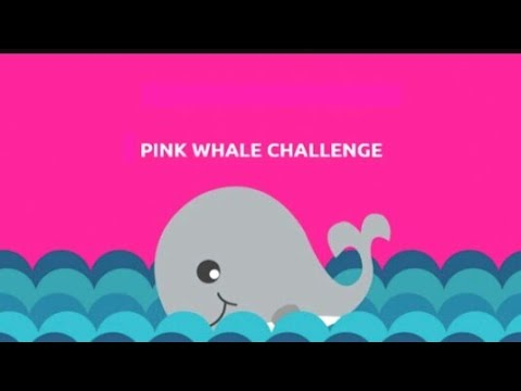 ×The Pink Whale Challenge |●What is This??