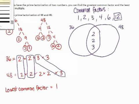 Grade 8 13 Common Factors Via Venn Diagram Youtube