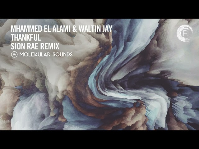 VOCAL TRANCE: Mhammed El Alami & Waltin Jay - Thankful (Sion Rae Remix) [Molekular] + LYRICS