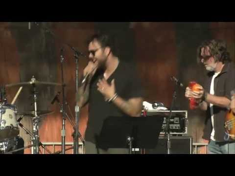 Franky Perez & The Forest Rangers - Higher Ground (Live at Hardly Strictly Bluegrass Festival 2013)