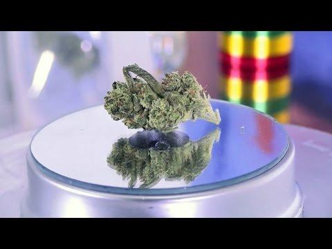 Marijuana review: Panama Punch, The Clinic, Denver