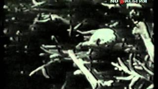 Крематорий - Мусорный ветер(Мусорный ветер, дым из трубы, Плач природы, смех сатаны, А все оттого, что мы Любили ловить ветра и разбрасы..., 2011-07-20T16:53:31.000Z)