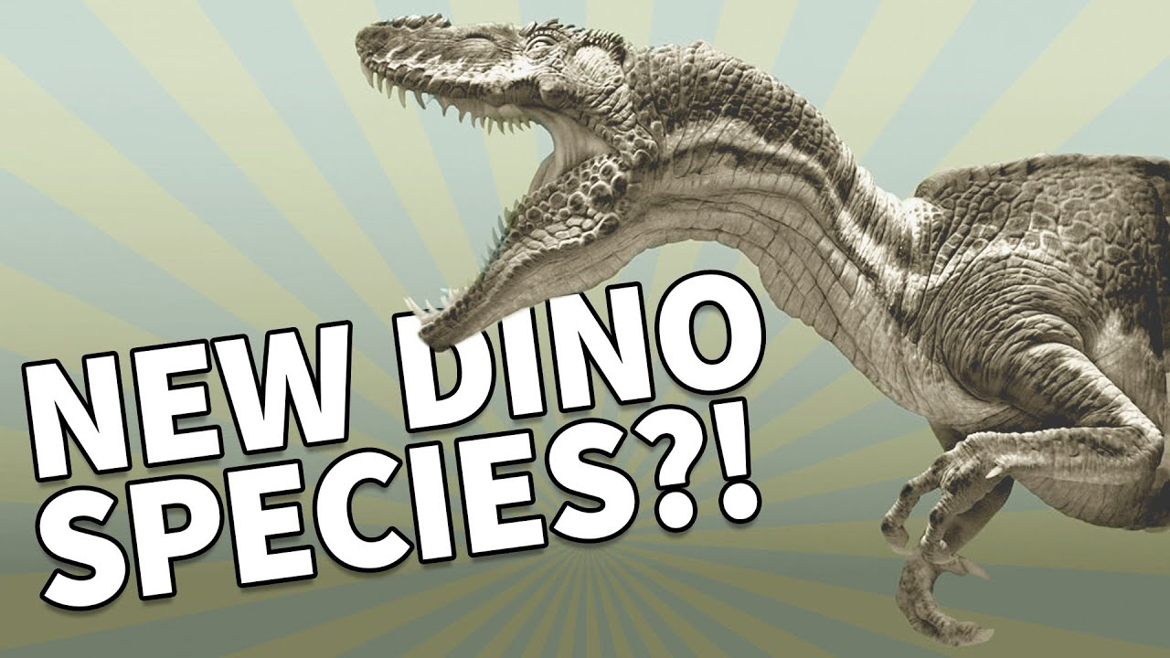 TOP 10 Amazing NEW DINOSAUR Discoveries - YouTube