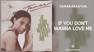 Tamar Braxton - If You Don't Wanna Love Me (432Hz)