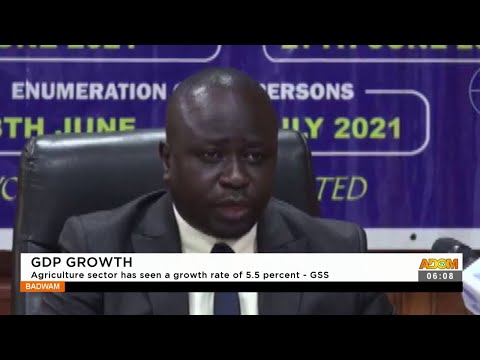 GDP Growth: Agriculture sector has seen a growth rate 55 percent - GSS- Adom TV (16-9-21)