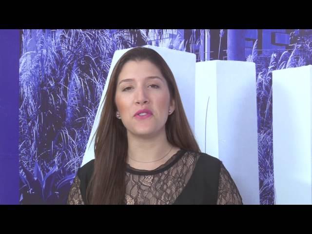 01 - RESTROSPECTIVA 2015 ALPHA CHANNEL NEWS 28/12/2015 ESCALADA