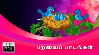 Birds Rhymes Collection in Tamil  | பறவை பாடல்கள் | Cartoon | Animated Rhymes | Tamil Rhymes |