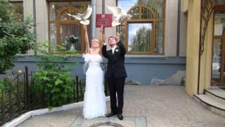 Антон + Юля бракосочетание 2Д